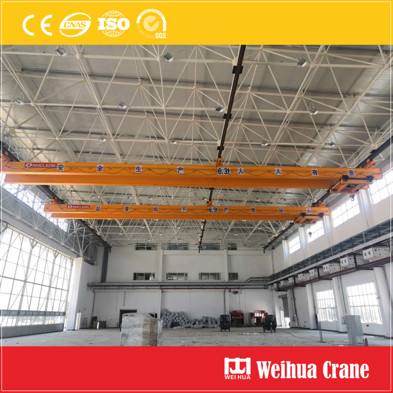 Multi-point-suspension-crane