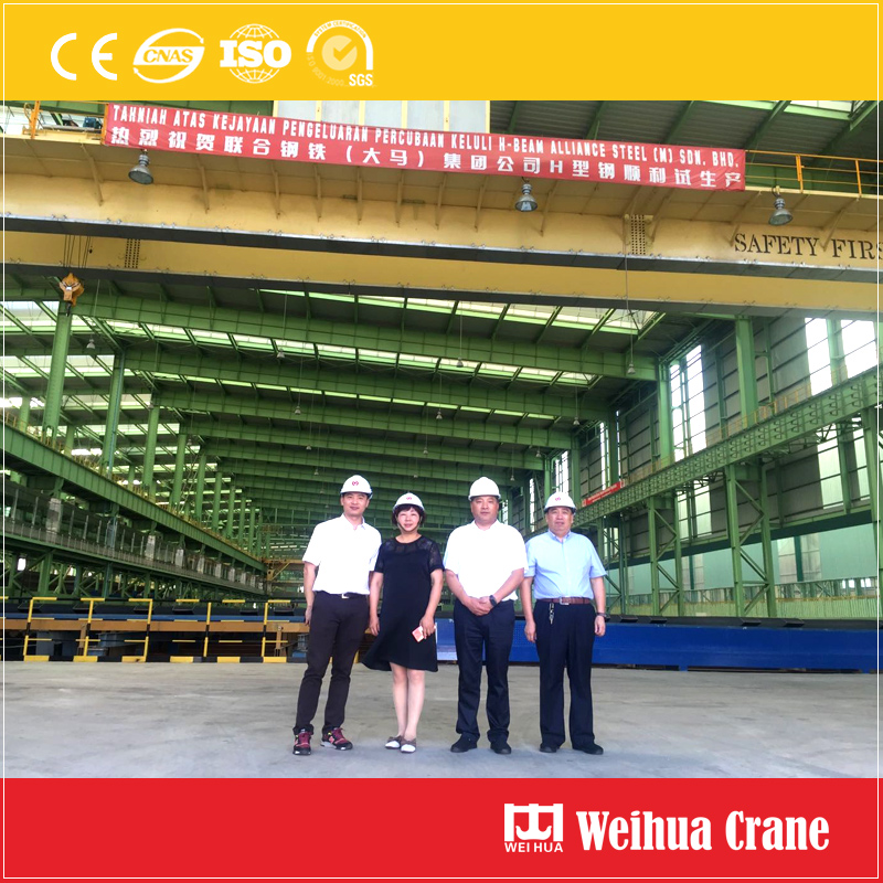 Weihua-steel-project-crane